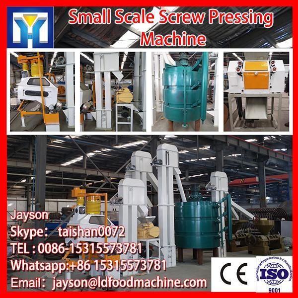 2012 Hot sale coconut oil press