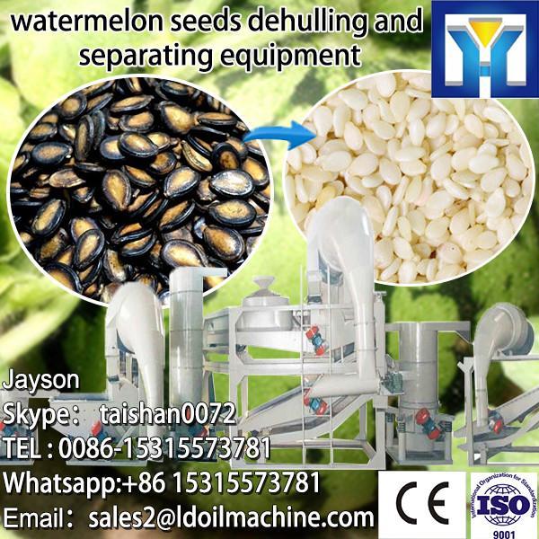 6YL-160 Oil expeller